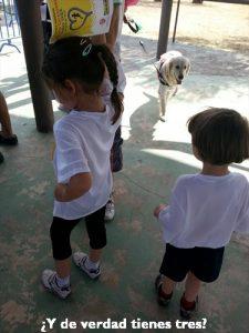 Carrera-benéfica-infantil-Menudos-corazones-Ikea
