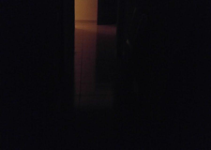 Noches, luces, jirafas y cobertizos.