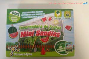 Mini sandías-melones-fresas-ciencia-juegos-niños-sorteo-ecológicos-blog