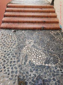 Carrer dels gats Benidorm Plaza del Castillo
