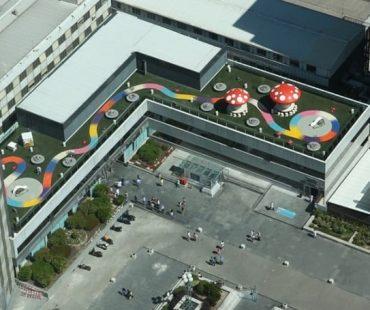 El jardín del hospital La paz
