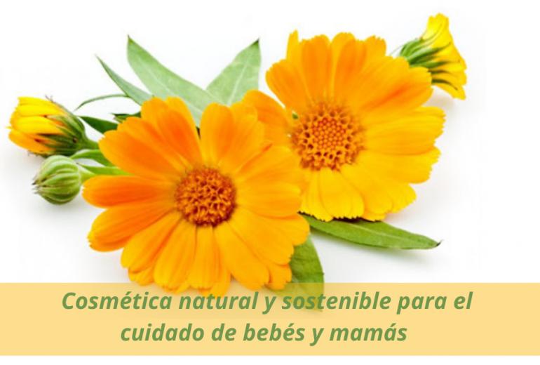 Cosmética natural y sostenible para el cuidado de bebés y mamás